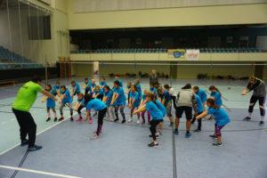 Volleytag 2019