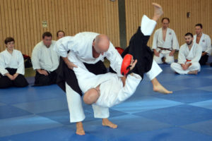 November Lehrgang Aikido 2019